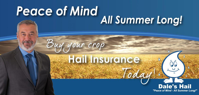 Crop Hail Insurance